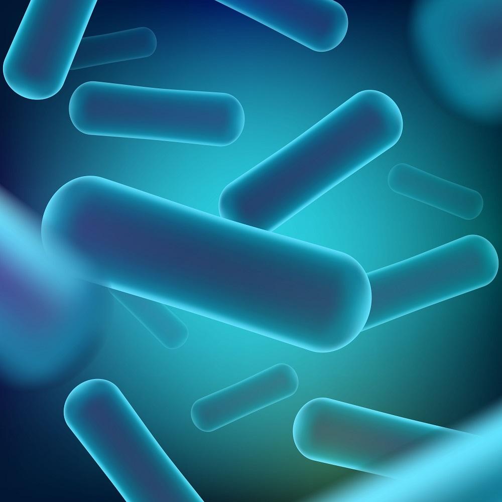 アシドフィルス菌でカンジダ対策